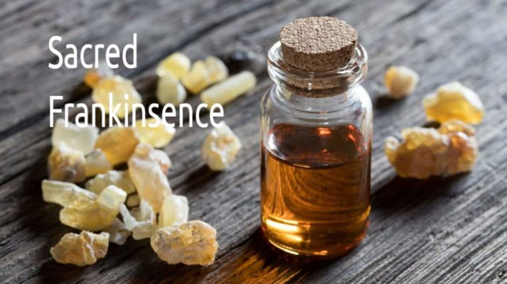 best sacred frankincense